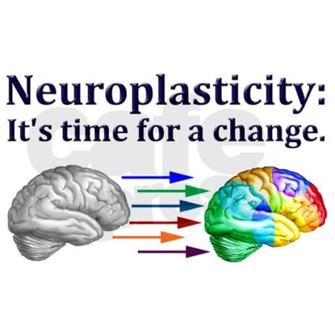 """the meaning and importance of neuroplasticity Neuroplasticity and brain function after acquired brain injury - probably the easiest way to conceptualize neuroplasticity after injury to the brain is to view it simply as re-learning (plowman and kleim, 2010 warraich and kleim, 2010) as kleim (2011) noted, """"the brain will rely on the same fundamental neurobiological process it used to acquire those behaviors initially."""